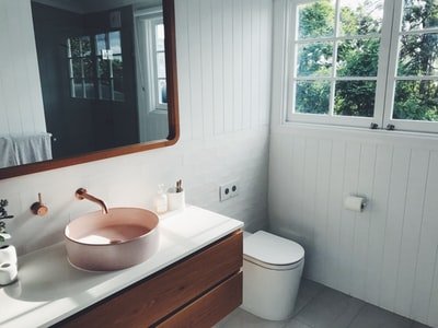 5-Year-Old Needs More Bathroom Renovation Ideas, But She Can't Get Them Right Now